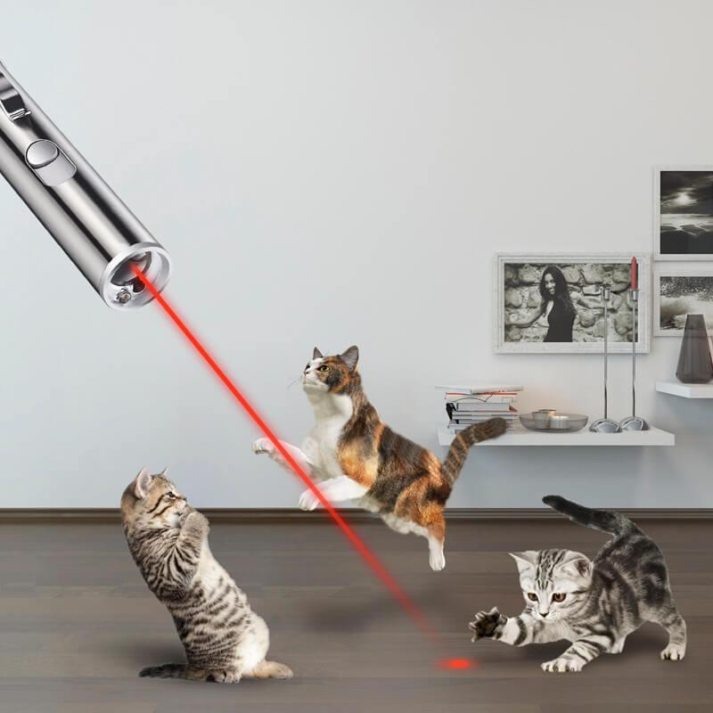 Đèn laser cho mèo