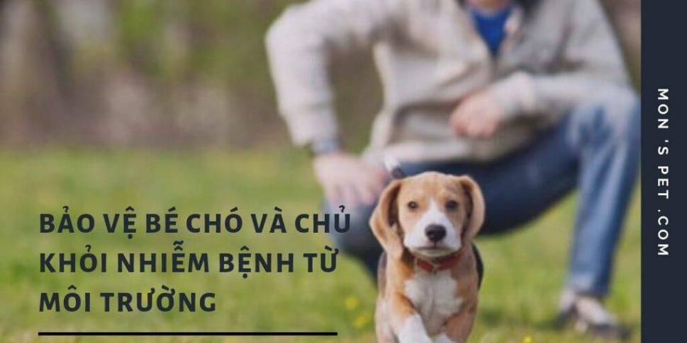Cách bảo vệ chó và chủ nuôi khỏi bệnh từ môi trường