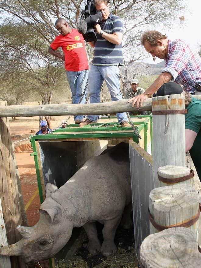 Việc trả tự do các loài có nguy cơ tuyệt chủng vào tự nhiên để hỗ trợ các chương trình nhân giống là một mục tiêu lớn của Quỹ Aspinall