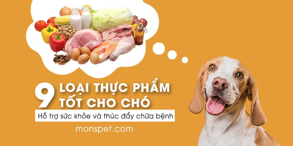 9 Loại thực phẩm tốt cho chó