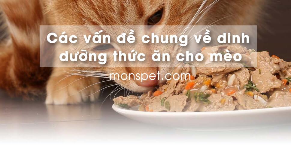 Các vấn đề chung về dinh dưỡng thức ăn cho mèo