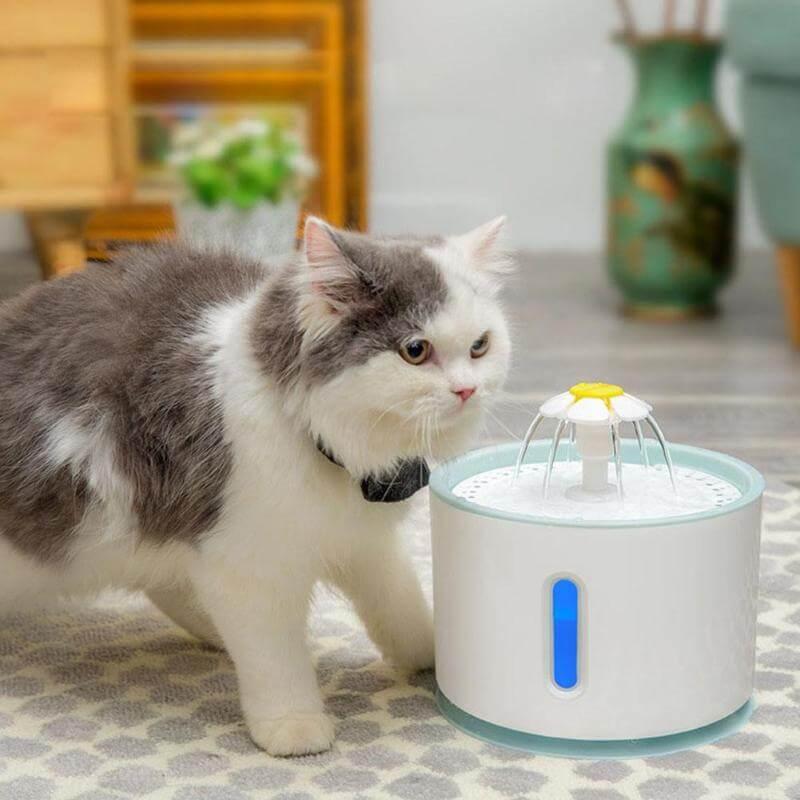 Đài phun nước giúp cung cấp nước sạch liên tục và kích thích tinh thần cho mèo | Cách khuyến khích mèo uống nhiều nước