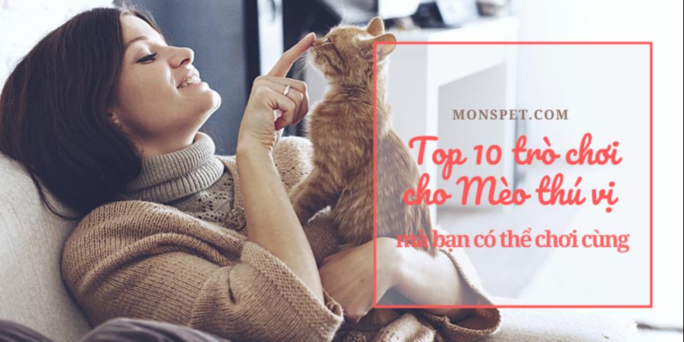 Top 10 Trò chơi cho Mèo thú vị để bạn chơi cùng | 2021