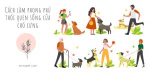 Cách làm phong phú thói quen sống của chó cưng