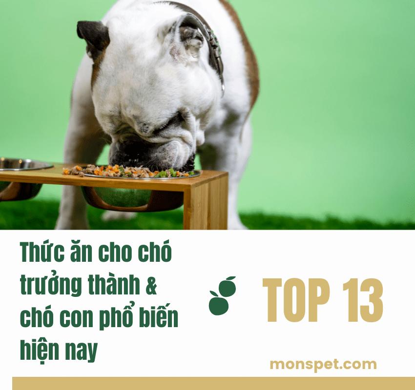 Top 13 thức ăn cho chó trưởng thành & chó con phổ biến hiện nay